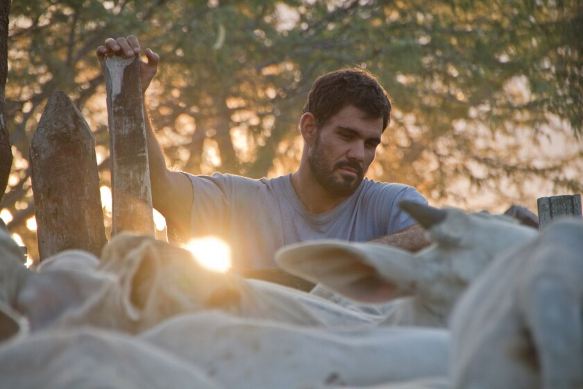 "Juliano Cazarre as Iremar in the movie ""Neon Bull."""