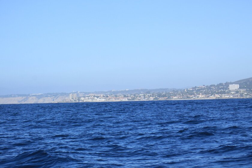 A view of La Jolla from the edge of the MPA