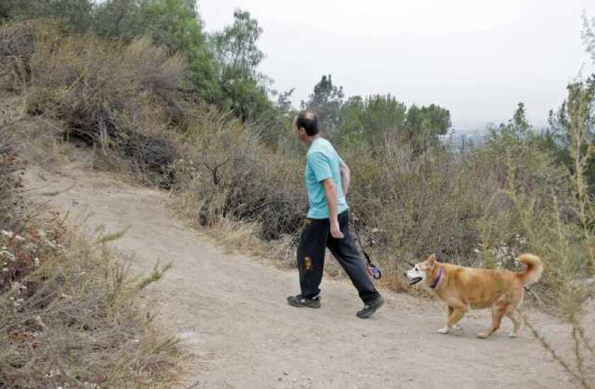 Fire crews rescue Brand Park hiker