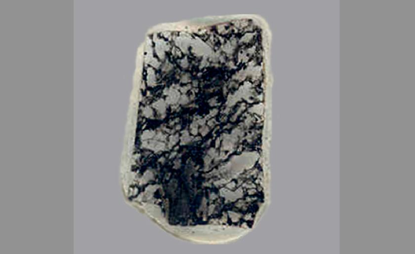 2.3-billion-year-old fossil bearing rock