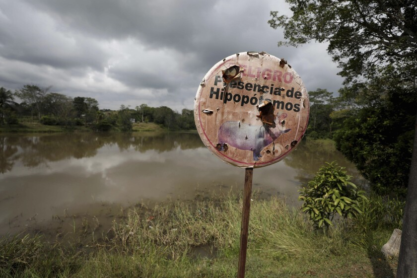 """A sign written in Spanish says """"Danger: Hippos present."""""""
