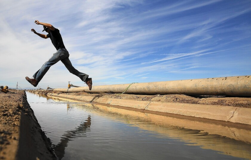 Imperial Valley farmer Thomas Cox leaps across an irrigation canal