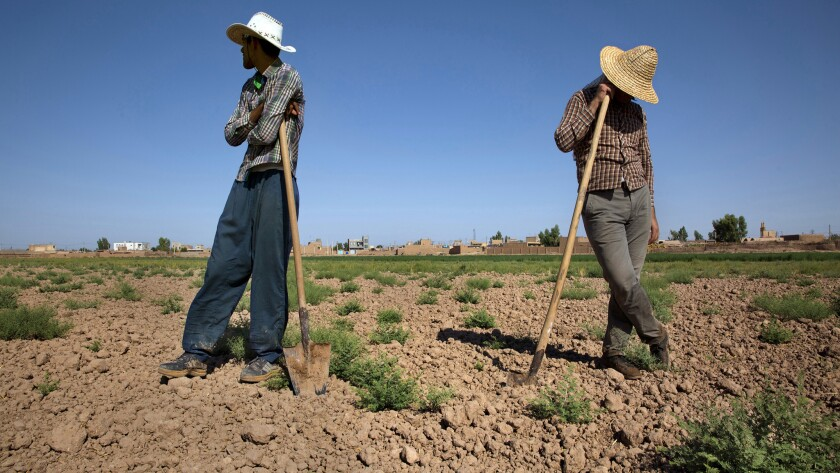 Hamid Reza Karimi, 24, left, and Ismail Karimi, 36, are unable to plant this plot of land because of the water shortage in Iran.