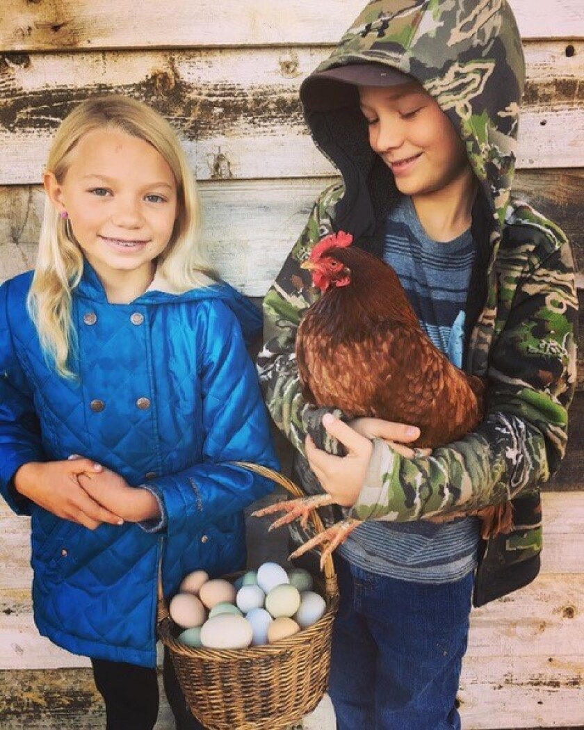 Charlie and her twin brother, Wesley, both 9, show off fresh eggs from some of the family's chickens.
