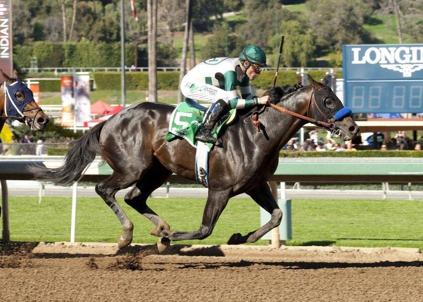 Mor Spirit with jockey Gary Stevens wins the Grade II $150,000 Robert B. Lewis Stakes at Santa Anita on Feb. 6.