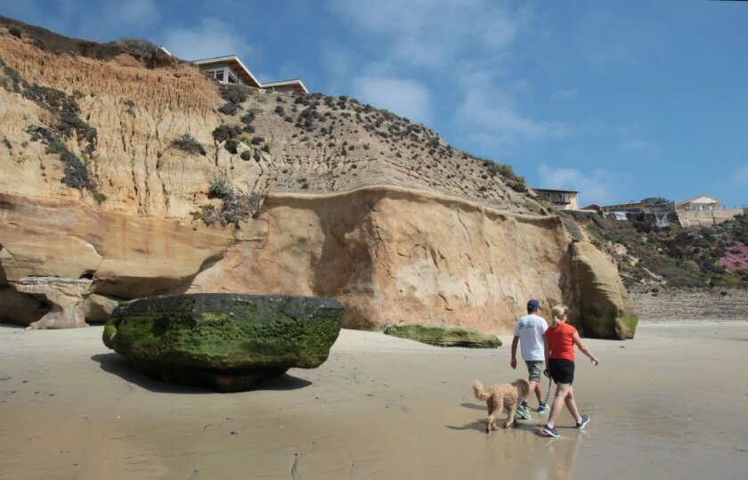 A couple with a dog walk past a seawall in Solana Beach earlier this year.