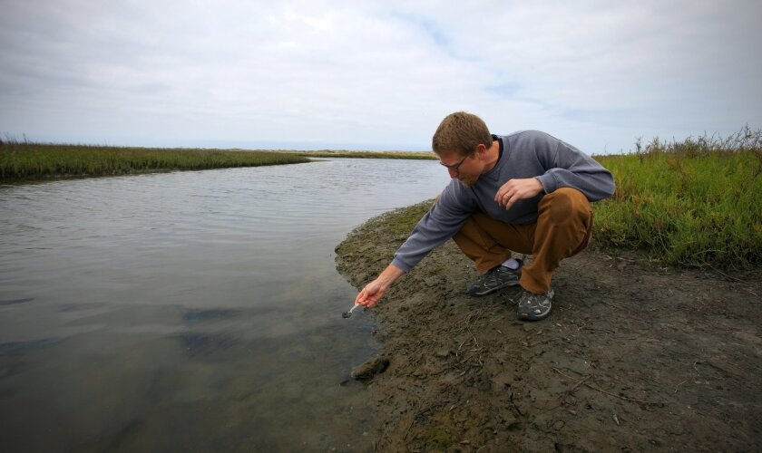 David Cummings, a professor at Point Loma Nazarene University, has found antibiotic-resistance genes in the Tijauna River Valley, leading to concerns about the potential those genes could work their way into bacteria that infect humans and undermine some of the world's most widely prescribed medici