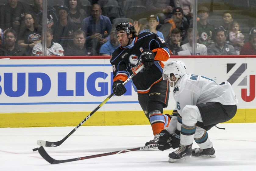 Game 1: Gulls vs. San Jose