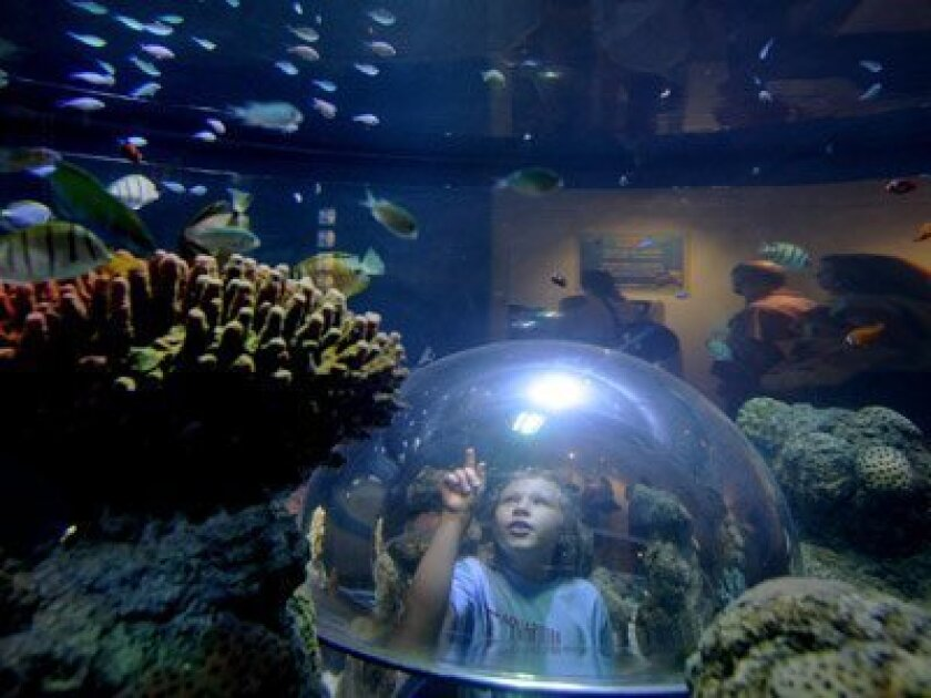Want to do something good for the environment and get a freebie in return? Then head on over to Sea Life Aquarium in Carlsbad