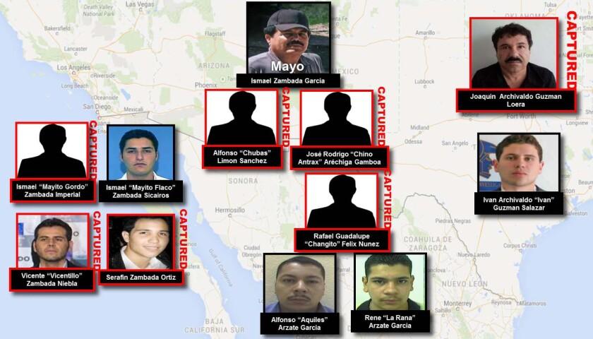"Multiple mugs of Sinaloa Cartel figures including Ismael Zambada ""Mayo"" Garcia, Joaquin Archivaldo G"