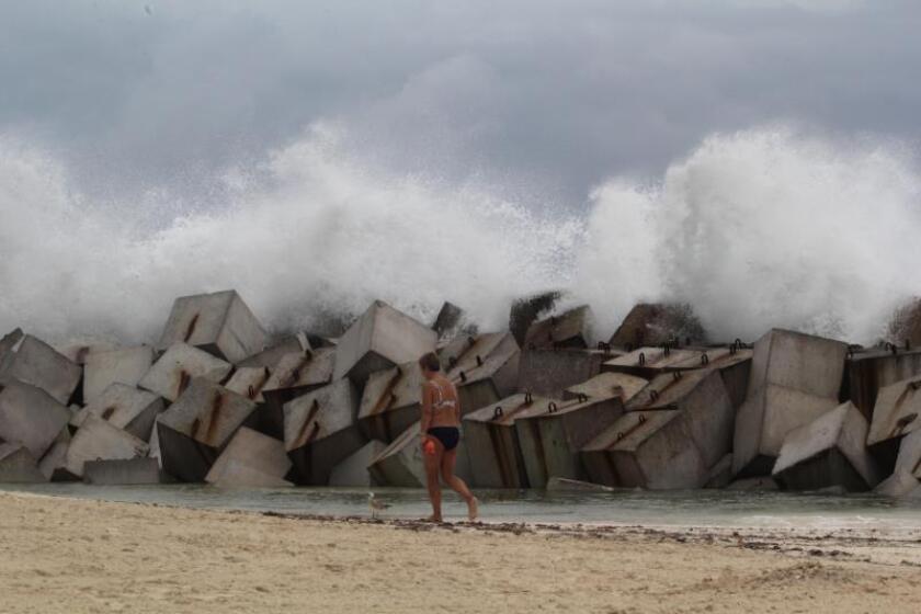 Fotografía de los efectos de la depresión marítima, consecuencia del paso del huracán Michael, en el estado de Quintana Roo (México). EFE