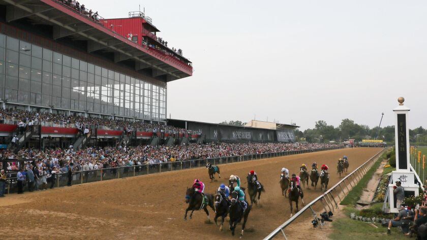 The field heads into the first turn during the 144th running of the Preakness Stakes at Pimlico Race Course on Saturday.