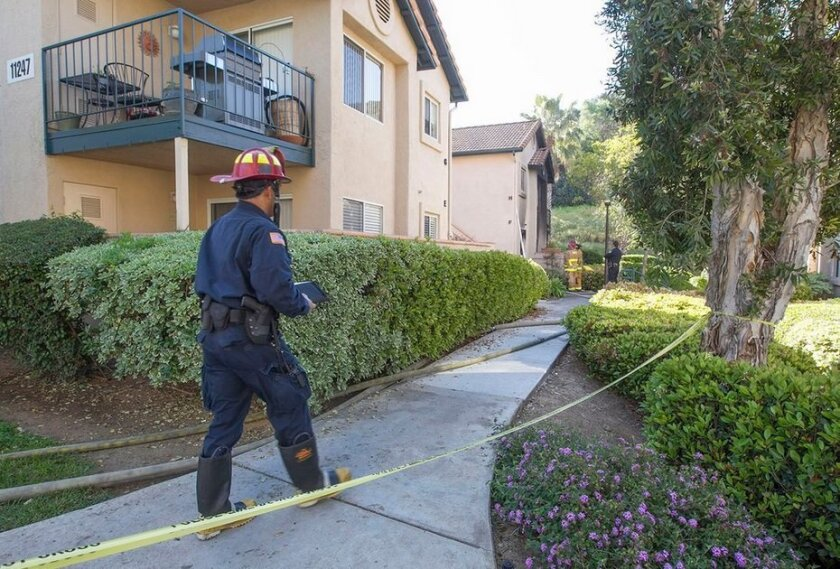 Two people were injured and a dog and a cat perished in a fire at a Rancho Bernardo condominium complex.