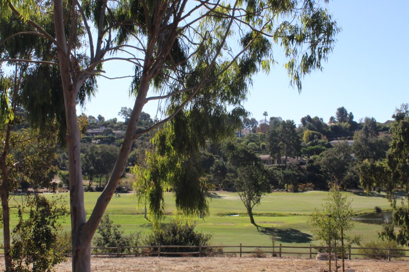 The Rancho Santa Fe Golf Club is following the set procedures for tree removal.