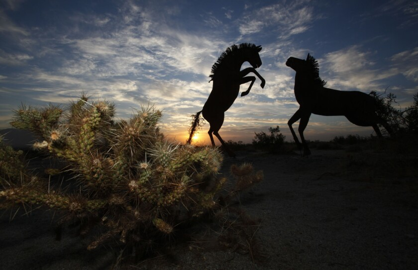 Scattered clouds made for a dramatic dawn over the desert in Borrego Springs Wednesday morning behind some of the metal sculptures of horses and other animals that surround this desert resort town in the middle of the Anza Borrego State Park. (Peggy Peattie/Union-Tribune)