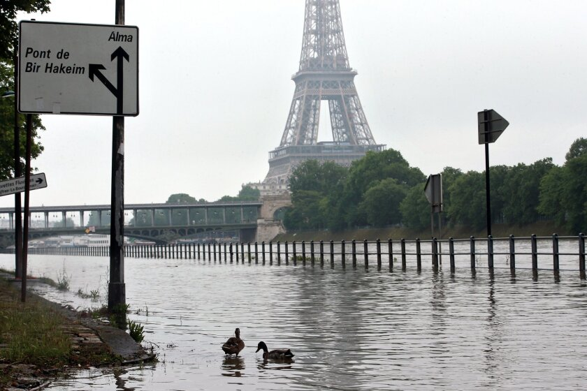 Ducks swim on the overflowing embankments of Paris, Wednesday, June 1, 2016. Paris City Hall closed roads along the shore of the Seine from the southwest edge of the city to the neighborhood around the Eiffel Tower as the water level has risen 4.3 meters (14 feet 1 inches) higher than usual. (AP Ph