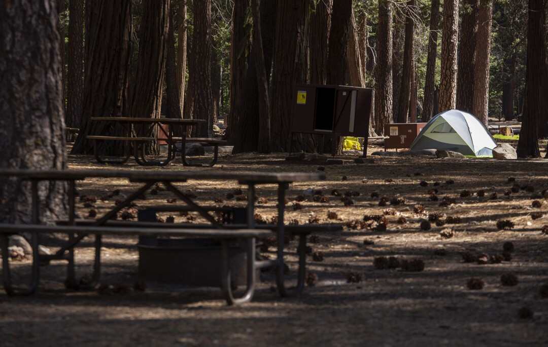 A lone tent in Yosemite Valley's Upper Pines Campground, where less than a dozen campsites were occupied.