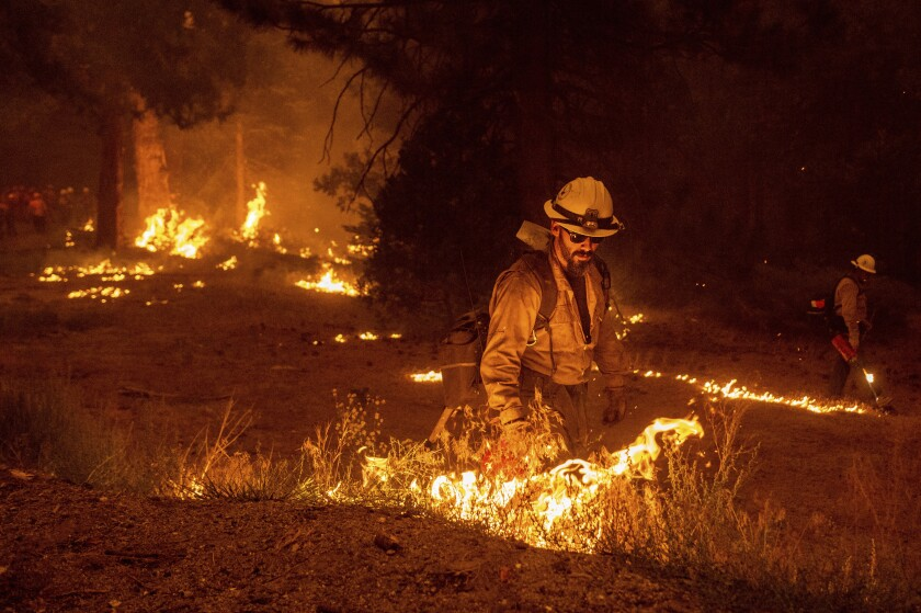 Firefighters with hand torches burn grass