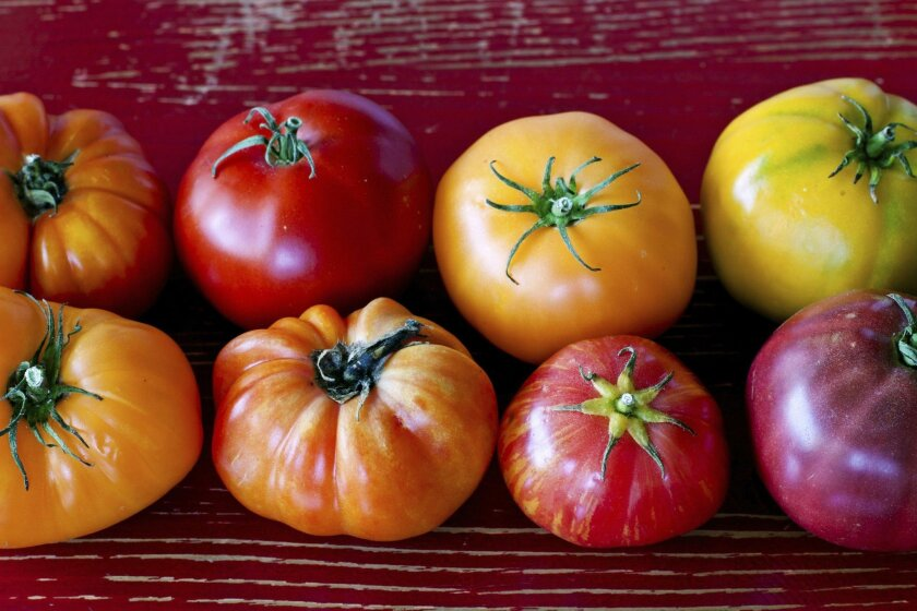 Heirloom tomatoes have great flavor and come in interesting shapes and colors.