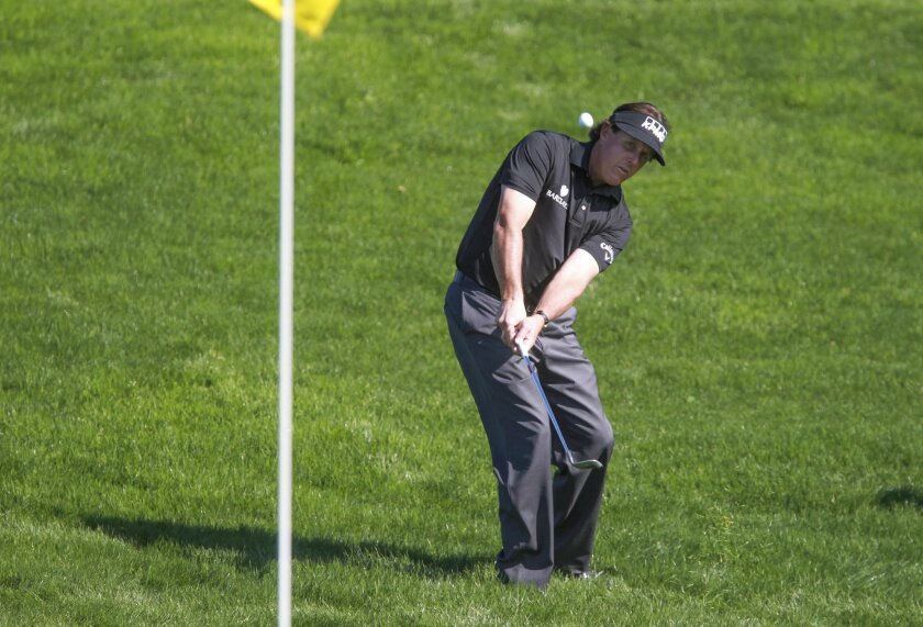 Phil Mickelson chips on to the North Course 5th green.