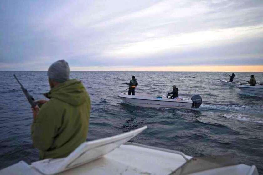 Varias personas con fusil navegan en botes para cazar ballenas cerca de Kulusuk, Groenlandia.