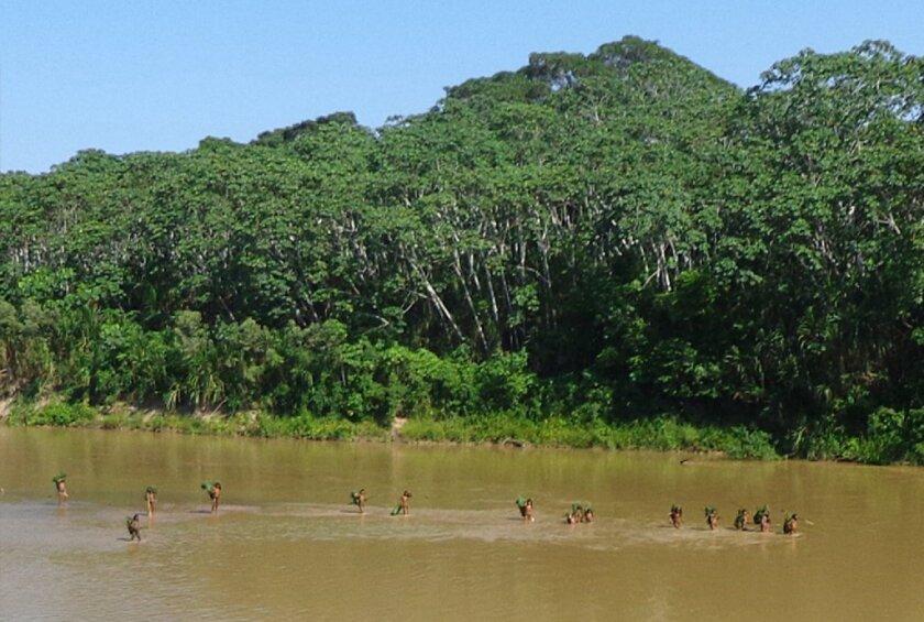 Amazon hunters and oxytocin