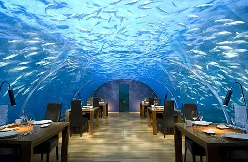 Ithaa Undersea restaurant sits 16 feet below sea level at the Conrad Maldives Rangali Island, a hotel resort in Hilton's luxury brand that occupies two islands. Maldives is a country of almost 1,200 islands about 300 miles from the southernmost points of India and Sri Lanka.