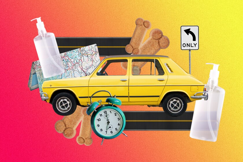 Illustration of a car with pandemic road trip necessities.