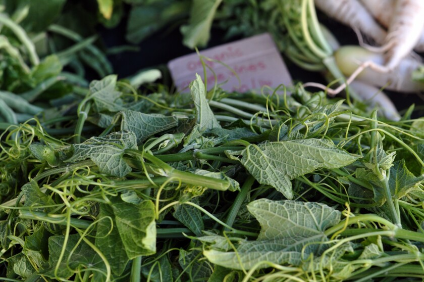L A  Farmers Market Guide: A small forest of organic Asian