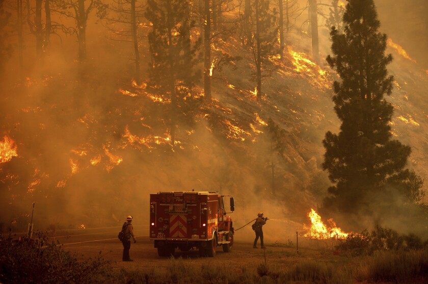 Two firefighters next to a fire truck battle a forest fire