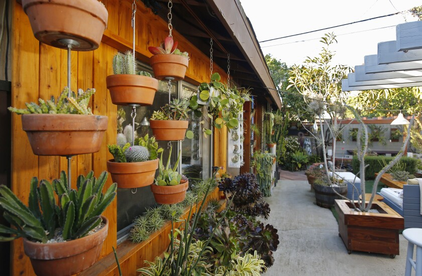 Ryan Benoit invented Sky Pots, a plant hanging kit that stacks hanging plants, shown here at left at his La Jolla home.