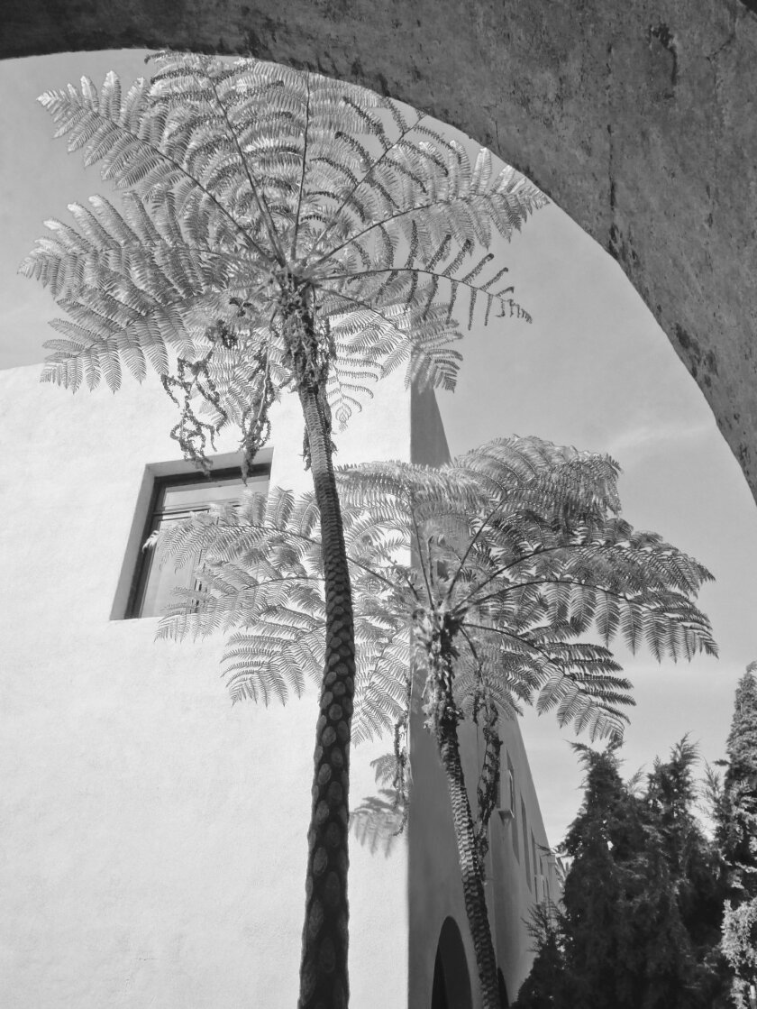 This 2014 photo of Betham Arch at The Bishop's School is included in La Jolla Historical Society's 'The Irving Gill Photographic Project' exhibit. Gill designed several historic buildings around town, including some at Bishop's. Suda House.