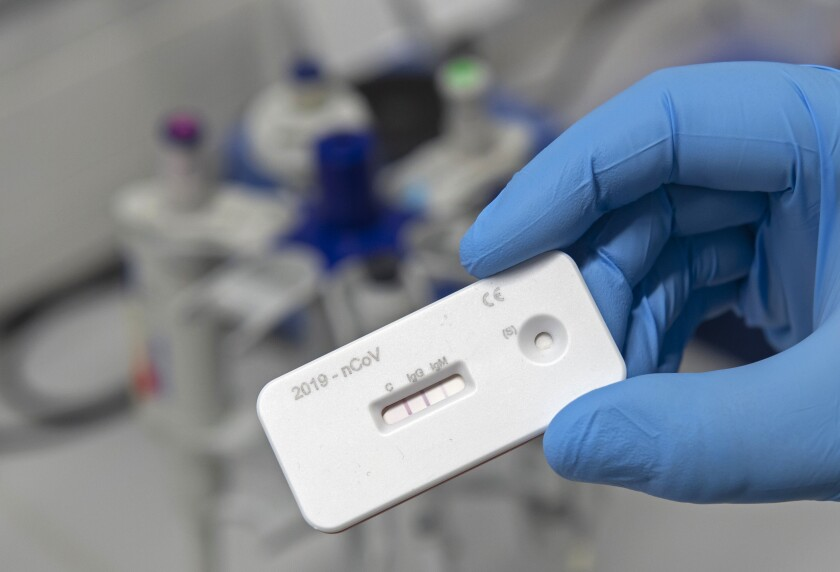 A scientist presents an antibody test for coronavirus in a lab in Germany.