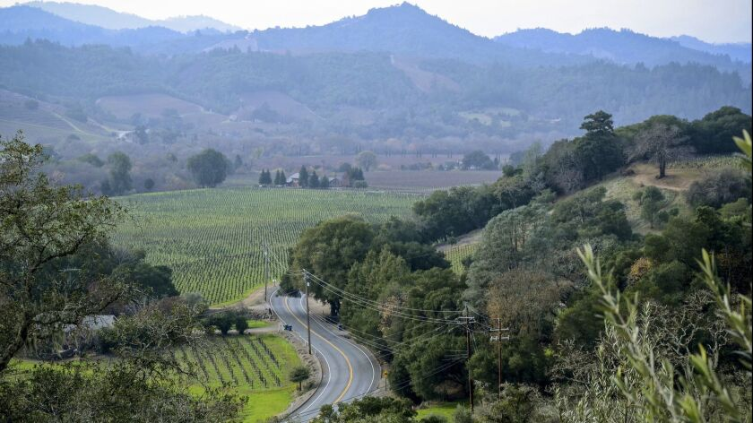 View from Trattore Estate Wines on Dry Creek Road north of Healdsburg, Sonoma County.The winding str