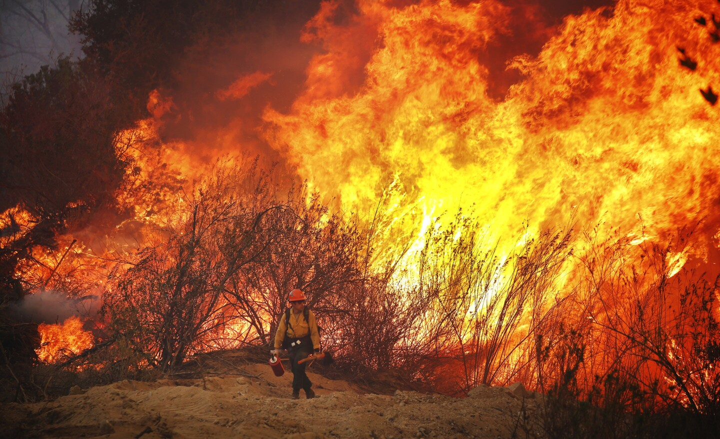 Firefighter Brandon Opliger with the U.S. Forest Service hotshots monitors the Marek Fire as it burns along Little Tujunga Canyon Road above Lake View Terrace.