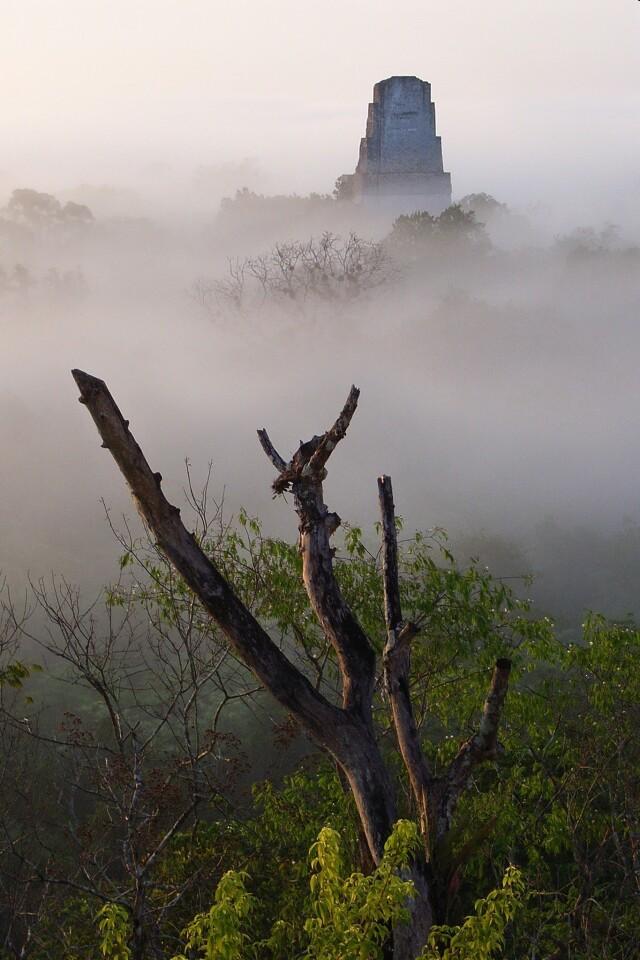 Temple of the Giant Jaguar