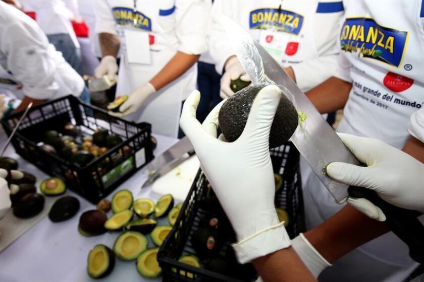 Fotografía de archivo del 3 de septiembre de 2017, de la elaboración del guacamole más grande del mundo, en la ciudad de Concepción de Buenos Aires, en el estado de Jalisco (México). EFE/Archivo