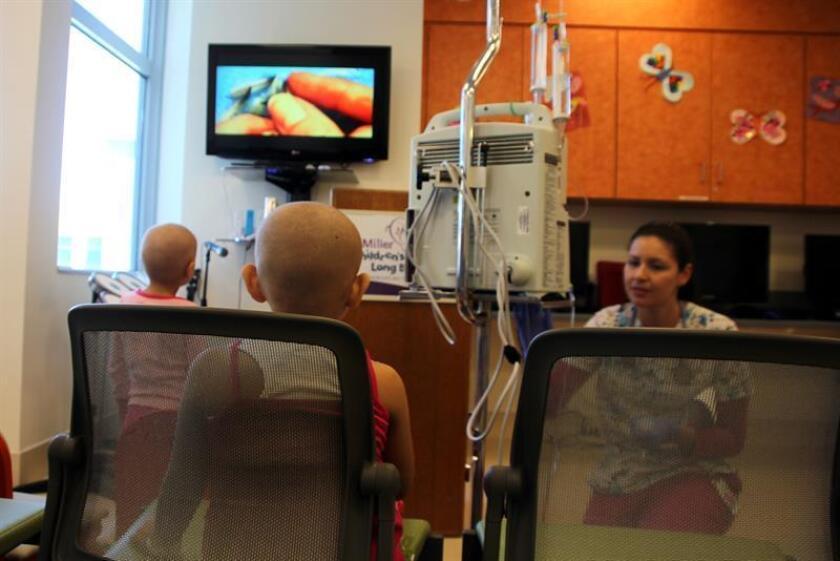 Los tratamientos a base de anticuerpos son una opción para duplicar la esperanza de vida de los pacientes que padecen leucemia frente a las terapias como quimioterapia y trasplante de médula ósea, aseguró a Efe un especialista. EFE/ARCHIVO