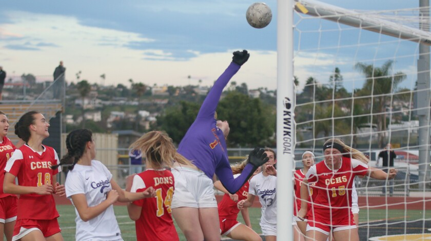Goalkeepers Justy Carruthers (shown) and Julia Walsh backstopped the Don defense.