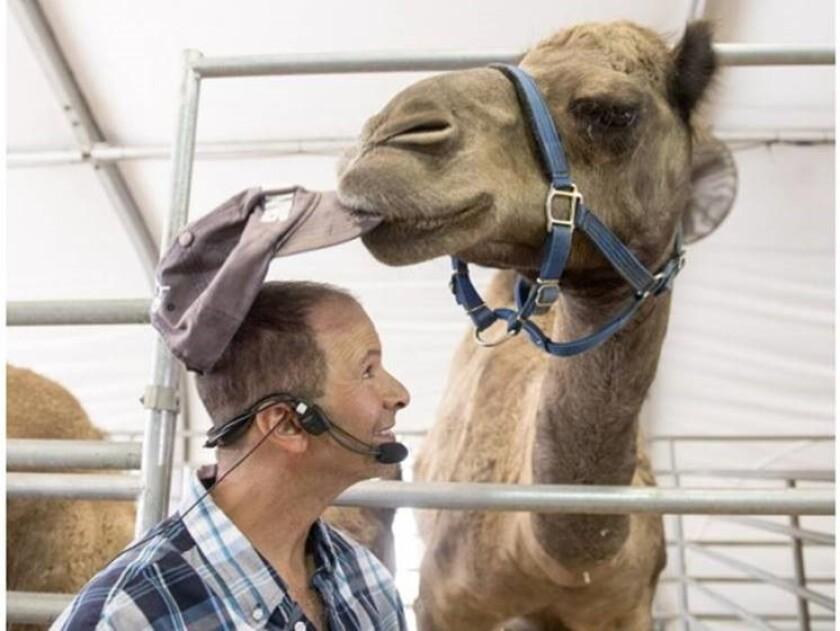 camel Gil Riegler of Oasis Camel Dairy in Ramona.jpg