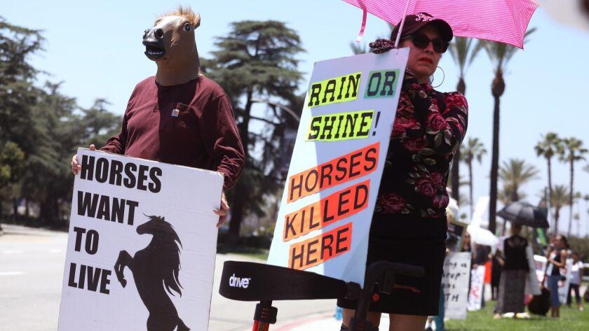 ARCADIA, CA - JUNE 23, 2019 - Robert Penney, 48, from Laguna Beach, in horse mask, joins animal ri