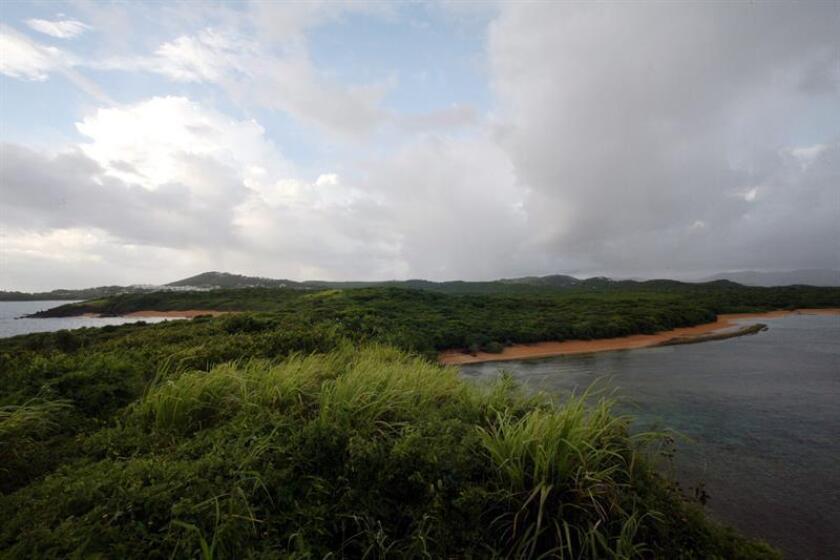 Vista de la franja costera del Corredor del Noroeste, localizado en los municipios de Luquillo y Fajardo, y forma parte del último segmento de la Sierra de Luquillo y une el Bosque Nacional El Yunque y la Reserva Natural Las Cabezas de San Juan. EFE/Archivo