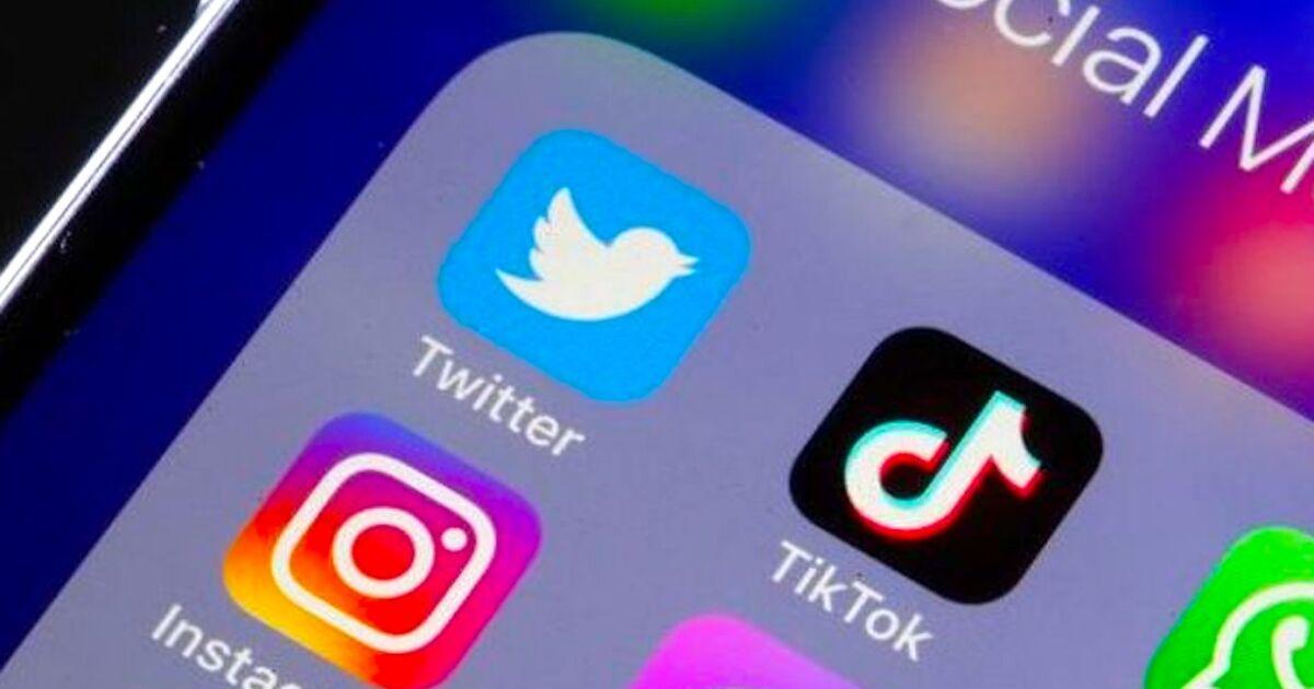 Twitter comprará el negocio de TikTok en EE.UU? - Los Angeles Times