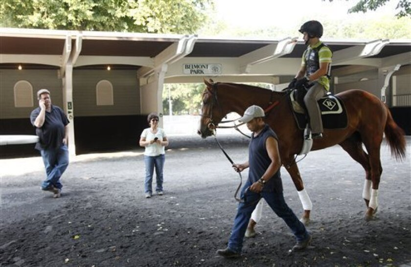 Trainer Dale Romans, left, and Tammy Fox, second left, watch as Shackleford is schooled in the paddock, Thursday, June 9, 2011 at Belmont Park in Elmont, N.Y. Shackleford, winner of the Preakness, is entered in Saturday's Belmont Stakes. (AP Photo/Mark Lennihan)