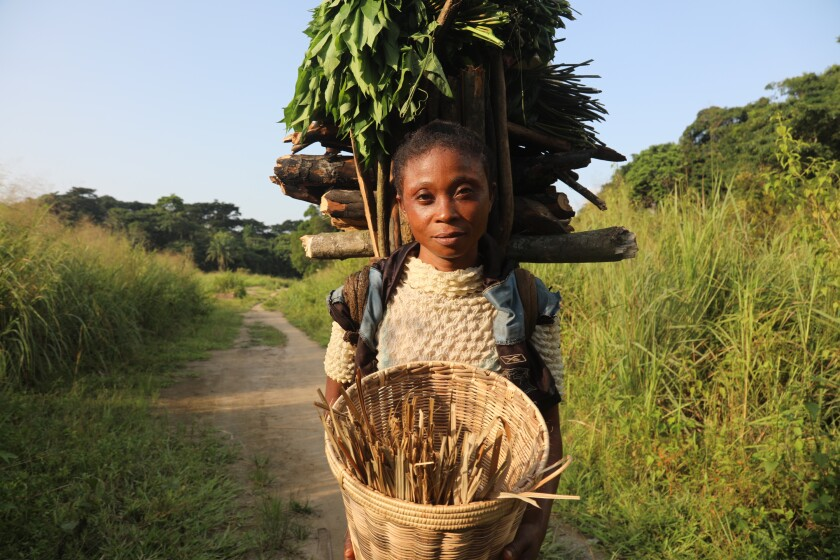 Mafi Esefa collects wood and cassava leaves.
