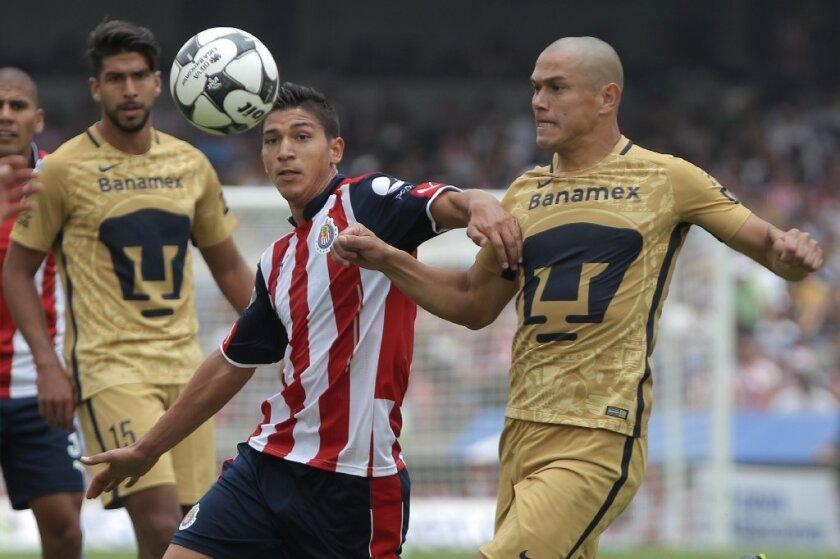 El delantero de Chivas, Ángel Zaldívar (c) tiene la responsabilidad de hacerse sentir ante Rayados.