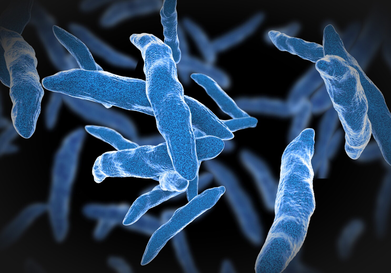 FDA approves tuberculosis drug that works on hard-to-treat cases