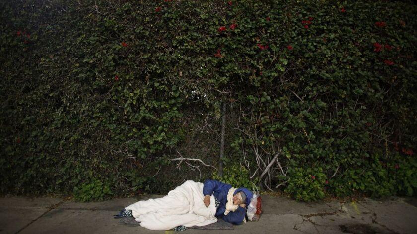 Rachel Phillips, una mujer desamparada que sufre de una enfermedad mental, de aproximadamente 67 años de edad, duerme en una banqueta de Hollywood.