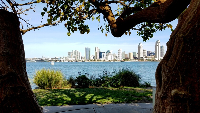 With a tree-covered park setting and cozy benches overlooking the San Diego skyline, Bayvew Park in Coronado is one of the most romantic places in San Diego.