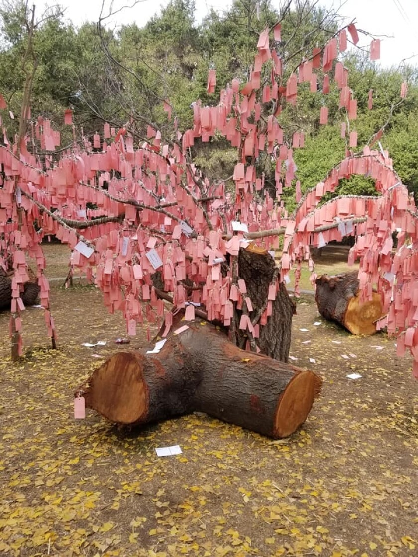 A tree covered with pink cards on which wishes have been written.